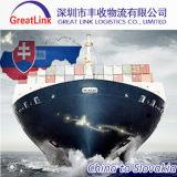 Serviço do frete de mar (FCL/LCL) de Shenzhen, Shanghai, Ningbo, Qingdao a Slovakia
