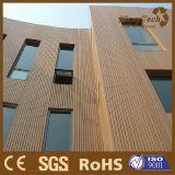 옥외 합성 목제 벽 클래딩 클래딩