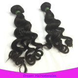 直接工場卸売のバージンのインドの人間の毛髪のWeft緩い巻き毛