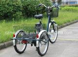 Triciclo elétrico triciclo grande de 36V 250W Trike para venda
