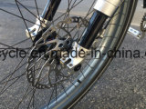 """26 """"隠された電池Eのマウンテンバイク(SY-E2633)が付いている電気バイクの自転車"""