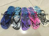 Señora Casual Flip Flops Softable Zapatillas Sandalias Mujer (FFLT1017-03)