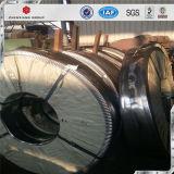 Bobina d'acciaio laminata a caldo di vendita calda HRC della Cina