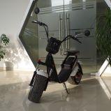 上部の取り外し可能な李イオン電池(JY-ES055)が付いている中国のセリウム1000Wの電気スクーター