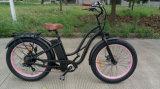 2016 طرّاد قوّيّة باردة سمين كهربائيّة درّاجة ثلج [إ-بيك] [48ف] [500ويث750و]