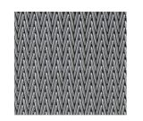 Cinghia della rete metallica dell'acciaio inossidabile per essiccamento, lavaggio, trattamento caldo
