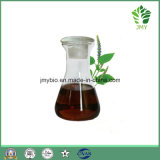 Heißer Verkauf Natural Patschulipflanze-wesentliches Öl, Haut-Sorgfalt