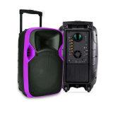 Lieferant 12 Zoll PA-Systems-Laufkatze-Projektions-Lautsprecher-mit Batterie