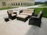 Rieten openluchtSofa Set Sofa met Koffietafel Side