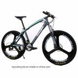 Hochwertiges Rad-Schnee-fettes Fahrrad mit Gummireifen 4.0 (LY-A-62)