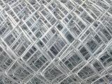 Загородка звена цепи нержавеющей стали