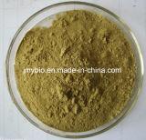 Polisacáridos 70%/Astragalosides 98% do extrato da raiz de Membranaceus do astrágalo
