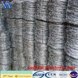 Heiße Verkaufs-Produkte galvanisierten Stacheldraht (XA-BW3)