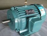 Трехфазный электрический мотор индукции серии Motor/Y