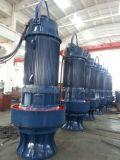 Водяная помпа нечистоты нержавеющей стали погружающийся (WQS)