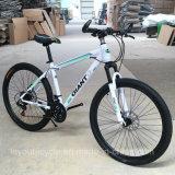 高品質カーボンマウンテンバイク(ly17)