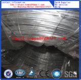 Fil galvanisé de fer pour gripper (BWG6-BWG28)