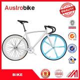 La bicyclette fixe simple bon marché de vitesse de la vitesse 700c de qualité en gros/a fixé le vélo de vitesse à vendre à vendre avec l'impôt libre de la CE