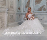 Мантия венчания платья Applique шнурка высокого качества Bridal