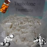 建物筋肉のための専門の未加工ステロイドTrenbolone Enanthate