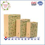Bolso de papel impreso del regalo para los cabritos