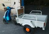 Triciclo elétrico para o riquexó da carga