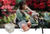 Mini rectángulo sin hilos audio portable de sonidos del mejor precio