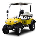 Buggy con errori di caccia di golf di 2 Seater con il cestino posteriore