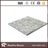 Tagliare a Size Granite Tile per Floor/Wall/Bathroom/Kitchen