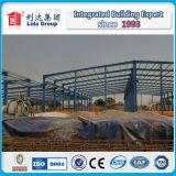 Gruppo di lavoro della struttura d'acciaio del moscato