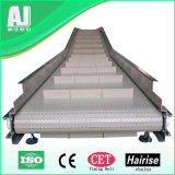 Alimento e Beverage Industry Modular Belt Conveyor