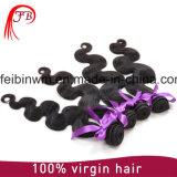 Do Virgin não processado do cabelo humano de Remy da alta qualidade extensão brasileira da onda do corpo do cabelo