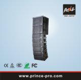 Het krachtige Systeem van de Serie van de Lijn PRO Audio