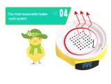 Incubateur de Hhd 2016 approuvés de la CE petit/incubateur portatif/mini incubateur pour l'éducation du miracle de la vie