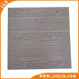 Tegel van de Vloer van Inkjet van de Decoratie van het huis 3D Rustieke Ceramische (600X600mm)