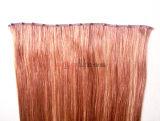手のTid毛の拡張の人間のRemyの毛のMutiカラーテープ
