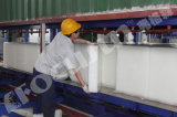Containerized машина льда блока делая, завод льда блока, линия создателя льда