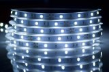 Tira flexible IP33/IP68 de SMD2835 los 60LED/M LED