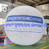 Ballon gonflable du logo Balloon/PVC