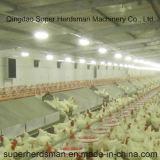 Equipamento de alimentação da galinha do reprodutor de Autamatic para a casa da exploração avícola