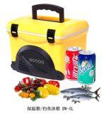 Im Freienfischen-Kühlvorrichtung-Kasten 5liter mit Radiofunktion