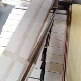 E1 3合板のシラカバによって設計される木製のフロアーリング