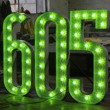 Letras e números do bulbo da decoração para anunciar