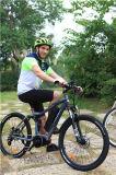 велосипед 22inch e Fatbike 48V 240W тучный электрический