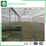 Invernadero de aluminio de la película del PE del perfil del marco de acero de la agricultura