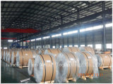 Bobina do aço inoxidável do teste padrão da bobina do aço inoxidável de ASTM 304