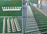 Accumulazione automatica dell'uovo per uso dell'azienda agricola degli uccelli del pollo