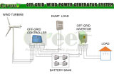 20kw horizontaal het van-net en het op-netSysteem van de Turbine van de Wind van de As