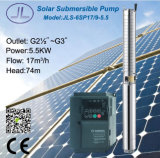 6in zentrifugale versenkbare Solarwasser Gleichstrom-Pumpe