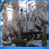Línea caliente línea de transformación equipo de la matanza de la vaca de la matanza